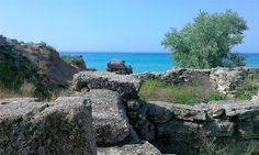 Беляус. Раскопки древнего городища.