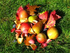 Autumnal confetti inspiration