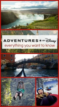 If you think a Disney vacation is all about Mickey Mouse and spending time in the parks, you're wrong. Here's the scoop on Adventures by Disney Disney Travel Planning Disney Destinations, Family Vacation Destinations, Disney Vacations, Disney Travel, Vacation Ideas, Disney World Tips And Tricks, Disney Tips, Disney Disney, Disney Magic