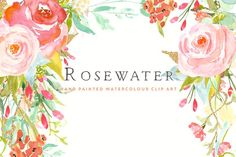 Flower Clip Art - Rosewater by CreateTheCut on @creativemarket