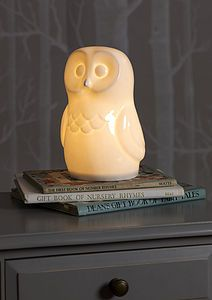 bone china owl lamp Design by: White Rabbit England, UK Stocking Fillers For Kids, Kids Lamps, China Lights, Disco Lights, Ceramic Owl, Nightlights, Glow Sticks, Book Gifts, Bone China
