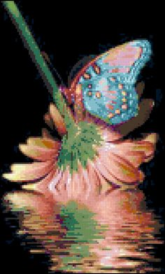 Butterfly and Pink Coral Flower Reflection Cross Stitch Pattern Design Chart…