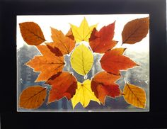 Laminated leaf art - laminate autumn leaves to make sun catchers with the kids...