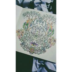 #johannabasford #enchantedforest