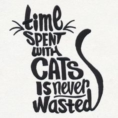 Time Spent with Cats | Urban Threads: Unique and Awesome Embroidery Designs