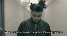 Professional The Weeknd