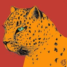 Pencil Drawings, My Drawings, Leopard Cat, Mixed Media, Digital Art, Bright, Illustrations, Sunset, Cats