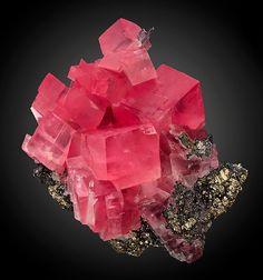 Tucson 2016-Rhodochrosite Sweet Home Mine Colorado GEMMY rhombs of cherry-red Rhodochrosite with Hubnerite and Quartz on Sulfide matrix!