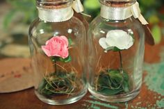 Presenteie seus convidados com delicadeza!    Potinho em vidro 20 ml com rolha de cortiça, cartãozinho em papel cartão, fita de cetim marfim (que pode ser alterada), flor em papel que você pode escolher dentre as cores disponíveis, plantinhas artificiais e fibra de côco. .    O cartão pode ser pe...