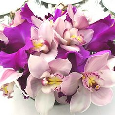 Two types of purple-hued orchids -- dendrobian and cattleya -- are gathered to make a stunning reception centerpiece.