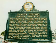 Tarpon Springs, Florida - Travel Photos by Galen R Frysinger, Sheboygan, Wisconsin Moving To Florida, Old Florida, State Of Florida, Florida Travel, Florida Home, Tarpon Springs Florida, Tallahassee Florida, Sterling Scotland, Sheboygan Wisconsin
