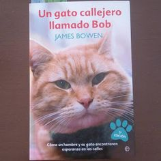 ¿Cómo quieres que cuente estrellas?: Un gato callejero llamado Bob. La película y el li...