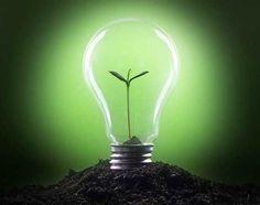 Ser uma Empresa Sustentável não é Só para Grandes Corporações .