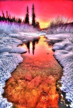 Winter Sunset |nature| |sunrise|  |sunset| #nature  https://biopop.com/