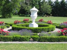 Pictured here is our version of a formal European garden of lavender and double knock out roses. A sea of boxwoods form plots which house the plants. Shown is the centre circle of an 8 plot garden. Boxwood Planters, Spiral Tree, European Garden, Rose Trees, Rose Pictures, Formal Gardens, Landscape Pictures, Garden Statues, Shrubs