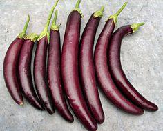 #LongPurple #Heirloom #Eggplant Seeds Non GMO