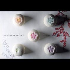 """一日一菓 「玉華寂菓 五種盛」 #煉切 製  #wagashi of the day """"tamahana jacca""""  本日は「玉華寂菓 五種盛」です。 北海道での実演で作った作品です。 久しぶりに作りましたが、やはりベースの球体のようなシンプルなモノこそ難しいです。  Today is the """"Tamahana jacca"""". It is a work made with demonstration in Hokkaido. Although I made for the first time in a long time, it is still what difficult simple things, such as the base of the sphere.  Oggi è il """"Tamahana Jacca"""". Si tratta di un lavoro fatto con manifestazione a Hokkaido. Anche se ho fatto per la prima volta da molto tempo, è ancora…"""