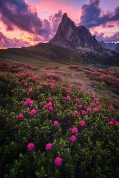 Giau Pass, Dolomites Mt., Colle Santa Lucia, Italy