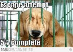 E he he such an escape