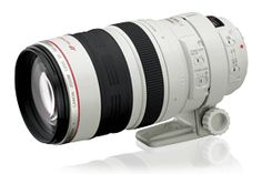 Canon EF 100-400mm f/4.5-5.6L IS ------- I love this lens however many do not like the push pull design.  I honestly do not mind it.  Mine is sharp as a tack and I get great photos from it.