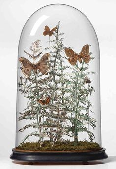 A Matter of Belief: Botanical Sculptures Made of Currency by Justine Smith | Faith is Torment | Art and Design Blog