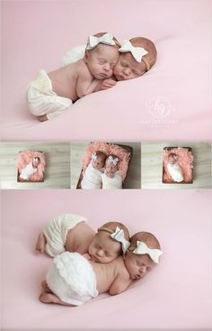 Twin girl newborn session by Hayley Gibbs Photography Twin Newborn, Baby Outfits Newborn, Twin Baby Girls, Twin Babies, Newborn Session, Newborn Photos, Summer Baby Photos, Willow Tree Family, Picture Ideas