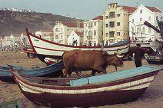 Nazaré, Portugal 1972