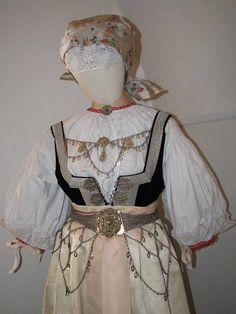 Costume of Cieszyn or Těšín, Silesia Polish Embroidery, Folk Embroidery, Folk Costume, Costumes, German Costume, Polish Folk Art, Folk Clothing, Silk Brocade, Arte Popular