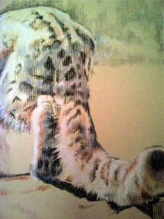 A Tail Mandala, Graphics, Paintings, Sculpture, Drawings, Cats, Animals, Gatos, Graphic Design