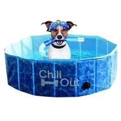 Chill out dog pool - honden zwembad