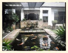 1000 Images About Indoor Ponds On Pinterest Indoor Pond Ponds And Fish Ponds
