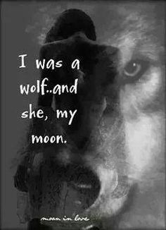 I will always see her as my moon, even though she may never see me as her wolf a. - I will always see her as my moon, even though she may never see me as her wolf again as long as she - Wolf Spirit, Spirit Animal, Lone Wolf Quotes, Wolf Qoutes, Wolf Love, She Wolf, Warrior Quotes, Big Bad Wolf, Lonely