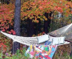 I love the idea of having a cozy hammock spot tucked away among nature.