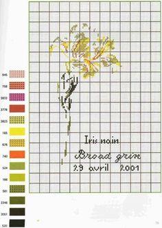 Marie-Thérèse Saint-Aubin cross stitch Cross Stitch Flowers, Cross Stitch Patterns, Cross Stitch Collection, Stitch 2, Cross Stitching, Flower Designs, Needlework, Embroidery, Cushions