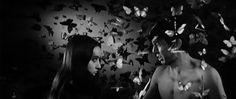 Branded to Kill (1967, Seijun Suzuki) /  Cinematography by Kazue Nagatsuka