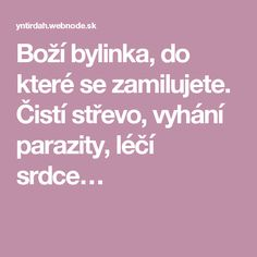 Boží bylinka, do které se zamilujete. Čistí střevo, vyhání parazity, léčí srdce… Nordic Interior, Healing Herbs, Natural Medicine, Life Is Good, Lose Weight, Health Fitness, Healthy, Medicine, Life Is Beautiful