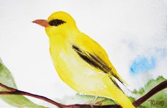 Golden Oriole Bird Painting Original Art Original by MixmatchGIFTS