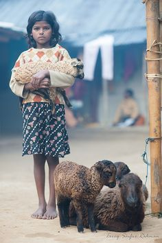 ...had a little lamb in Bangladesh