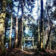 #文脈登山 #低山トラベル #円仁 #慈覚大師 #御廟 #比叡山 #滋賀県 #beautifuljapan #hikingtrail #ShigaJapan