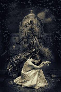 gothic romance   My Gothic Romance / .
