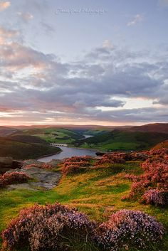 Up on Bamford Edge as the sun was setting over Ladybower Reservoir, Derbyshire