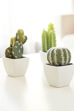 9 Fake Plants to Add Greenery to Your Home, Because We Kill Every Real One They look so real, too. - 9 Fake Plants to Add Greenery to Your Home, Because We Kill Every Real One Plant Aesthetic, Aesthetic Rooms, Fake Plants Decor, Plant Decor, Small Fake Plants, Living Room Plants, Tumblr Rooms, Toilet Storage, Bathroom Plants