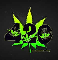 420 Meaning: The True Story Of How April 20 Became 'Weed Day' www. Best Picture For Washington logo For Your Taste You are looking for something, and it is going to tell you exactly wh Marijuana Wallpaper, Trippy Wallpaper, Weed Pictures, Cool Pictures, Weed Pics, Retro Humor, Marijuana Art, Medical Marijuana, Cartoon Memes