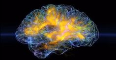 News about #Neuroscience on Twitter