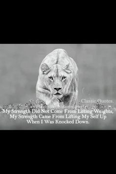 Hear me roar I have been knocked down many times and have always got back up