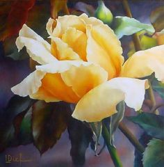 Into the Light - Oil by Lyn Diefenbach