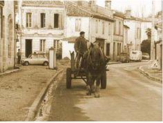 Photo ancienne de Castelnau de Médoc par Jacques Delahaye (Ancien Président du Syndicat d'Initiative) (Source : site officiel de la commune de Castelnau de Médoc) : le père 'Papot' sur son attelage rue Camille Godart (route de Ste Hélène)