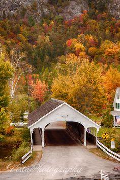 Stark covered bridge NH - New England fall foliage Beautiful World, Beautiful Places, New England Fall Foliage, Old Bridges, Autumn Scenes, Fall Pictures, Covered Bridges, Belle Photo, Beautiful Landscapes