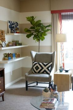 Fiddle Leaf Fig TREE | from Living Savvy