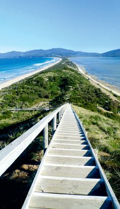 The magnificent view from Truganini Lookout at The Neck, which separates North and South Bruny Island, Tasmania Australia Coast Australia, Australia Living, Australia Travel, Melbourne Australia, Places To Travel, Places To See, Places Around The World, Around The Worlds, Tasmania Travel